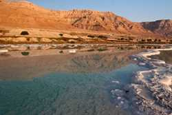 Reclaiming the Dead Sea: Alternatives for Action