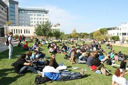 Technion's Contribution to Israel and to the Development of Technology in the World, Through Its Graduates