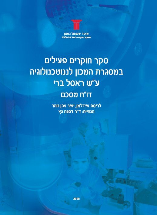A survey of active researchers at the Russell Berrie Nanotechnology Institute at the Technion